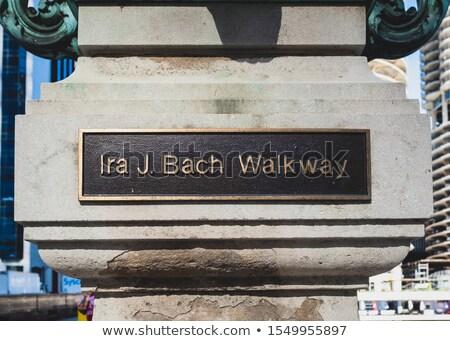 Chicago utca fehér feketefehér kép USA Stock fotó © vwalakte