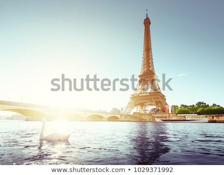 Cisne Torre Eiffel branco rio Paris céu Foto stock © Givaga