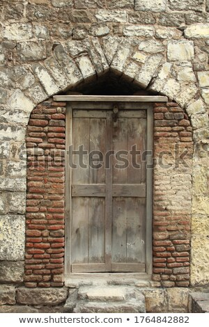 Wooden door in old fashioned style Stock photo © colematt