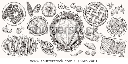 Pumpkin and Baked Pie Cranberry Sketches Vector Stock photo © robuart