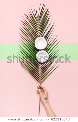 coconut in beautiful female hands on a green background the benefits of coconut water concept stock photo © galitskaya