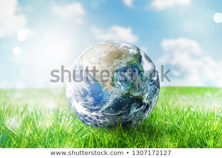 Earth globe in a green pristine field. World provided by NASA Stock photo © alphaspirit