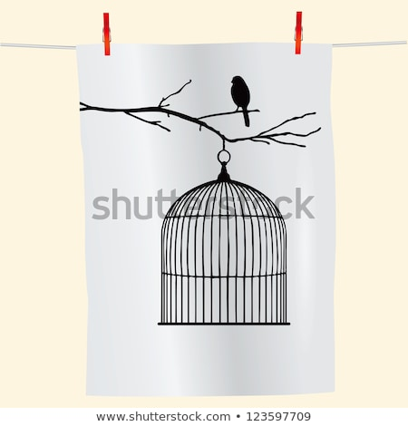 Bird cage on the rope Stock photo © colematt