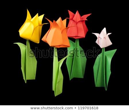 цветок оригами флора украшение бумаги вектора Сток-фото © robuart
