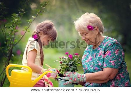 nagymama · lány · virágok · nyár · kert · kertészkedés - stock fotó © dolgachov