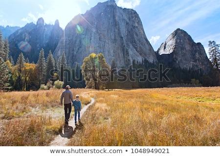二人 ハイキング 公園 実例 男 風景 ストックフォト © colematt