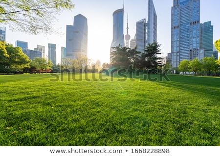 city park with green lawn stock photo © vapi