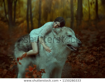 Little Wolf in Love Stock photo © cthoman