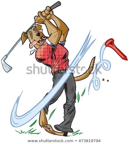 Cartoon dog swinging a golf club Stock photo © bennerdesign