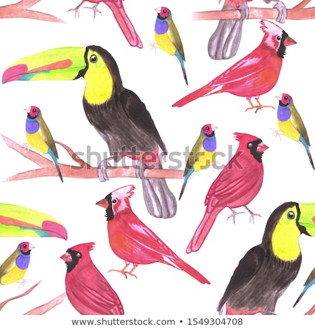 watercolor birds in tetrad color scheme seamless background Stock photo © shawlinmohd
