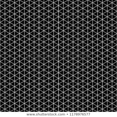 White isometric grid with vertical guideline on black Stock photo © evgeny89