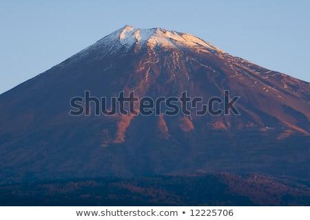 早朝 日照 富士山 空 森林 光 ストックフォト © craig