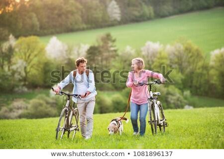 Older couple walking a dog Stock photo © photography33
