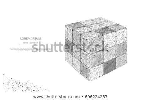 Vector dices on white background with meshes  Stock photo © experimental