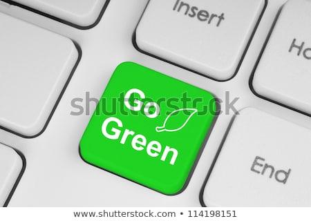 Verde chiave pulsante lettura bianco tastiera del computer portatile Foto d'archivio © iqoncept