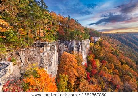 najaar · West · Virginia · vallen · vertragen · sluiter · snelheid - stockfoto © hanusst