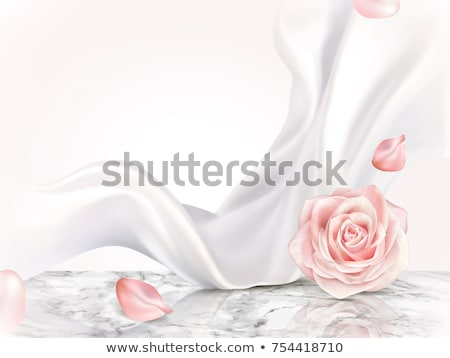 pink rose on satin fabric stock photo © frannyanne