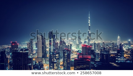 Dubai night cityscape Stock photo © Anna_Om
