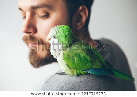 groene · papegaai · natuur · achtergrond · vogel · portret - stockfoto © jarin13