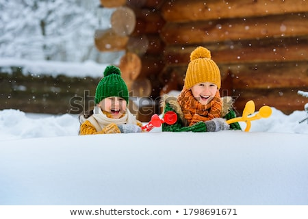 neige · ventilateur · détails · construction · glace · hiver - photo stock © suljo