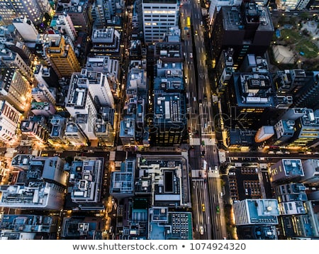 Bird view of the Tokyo city at twilight stock photo © shihina