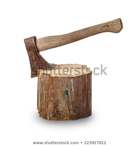 old hatchet over white Stock photo © taviphoto