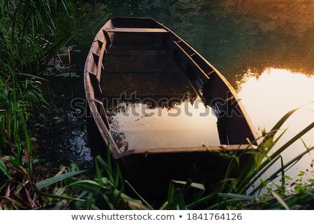 Terkedilmiş tekneler uzak göl kıyı park Stok fotoğraf © wildnerdpix