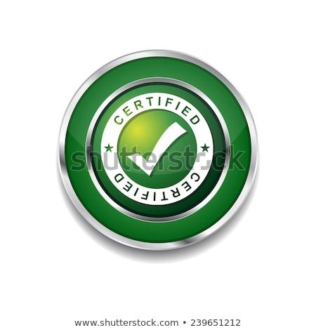 Pajzs körkörös vektor zöld webes ikon gomb Stock fotó © rizwanali3d