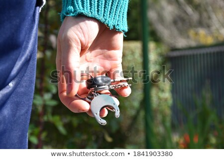 Hand holding house and bunch of keys. In the background, green hills with grass, roads Stock photo © cherezoff