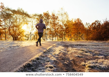 cold morning stock photo © pedrosala