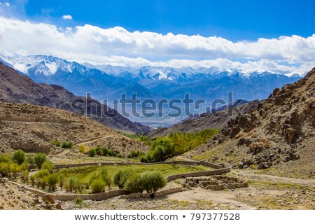 rural landscape with himalaya mountains seen from Leh valley Stock photo © meinzahn