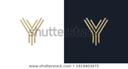 Vektör doğrusal kartvizit logo şablon Stok fotoğraf © Fractal86