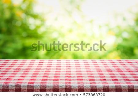 Piknik asztal kert színes francia tájkép macska Stock fotó © ivonnewierink
