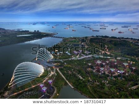 Kilátás Szingapúr sziget hajók ipari táj viharos Stock fotó © dutourdumonde