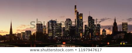 Frankfurt skyline nacht velden gebouw Stockfoto © meinzahn