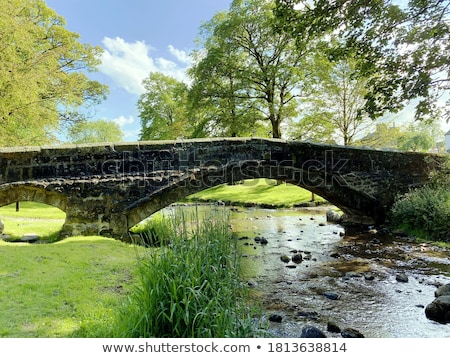 A bridge with trees Stock photo © bluering