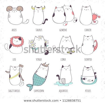 cat zodiac set stock photo © kali