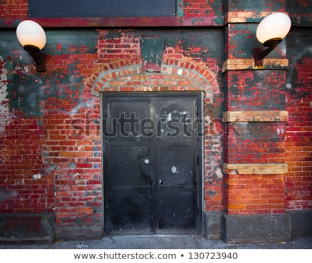 Backdoor, old weathered door and brick wall Stock photo © stevanovicigor