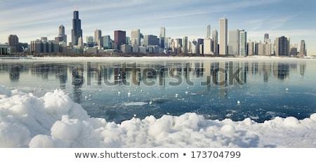 Tél Chicago arany part épületek fa Stock fotó © benkrut