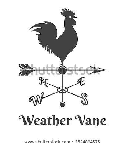 флюгер петух черно белые силуэта знак птица Сток-фото © Olena