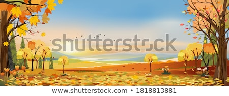 Automne paysage coucher du soleil montagne village belle Photo stock © Kotenko