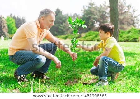 Grandfather and grandson planting tree Stock photo © IS2