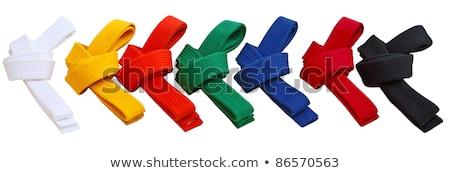 Karatê branco cinto vermelho esportes metal Foto stock © wavebreak_media