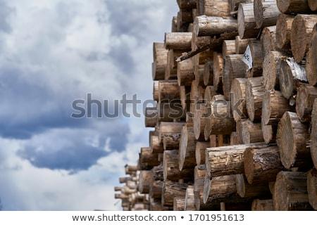 fa · háttér · száraz · aprított · tűzifa · egymásra · pakolva - stock fotó © vlad_star