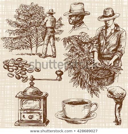 yeşil · fincan · kahve · öğütücü · ahşap · kahve · çekirdekleri - stok fotoğraf © Melnyk