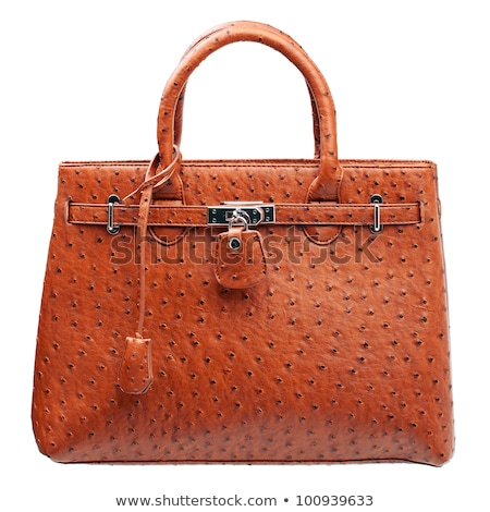 Stylish Expensive Female Handbag of Brown Leather Stock photo © robuart