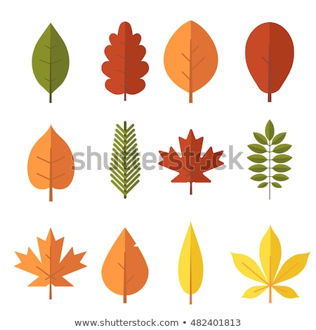 vector collection with green leaves in flat style for icons stock photo © pravokrugulnik