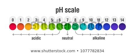 酸 バランス インフォグラフィック サークル フォーム ストックフォト © m_pavlov