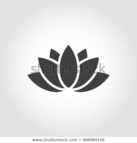 花 · 蓮 · ロゴ · アイコン · ベクトル · シンボル - ストックフォト © blaskorizov