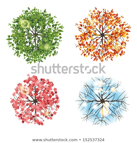 four different plants with silhouette stock photo © colematt